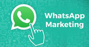 WhatsApp is Solely A Telecom App? Leads Development Expert It Is!